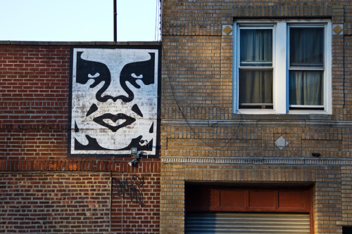 doorsandtunnels:  Shepard Fairey (OBEY GIANT) / Williamsburg (photo © Jason Lustig)