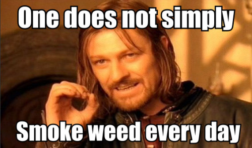 weedporndaily:  That's why we have weed porn daily.  i can not help but disagree…