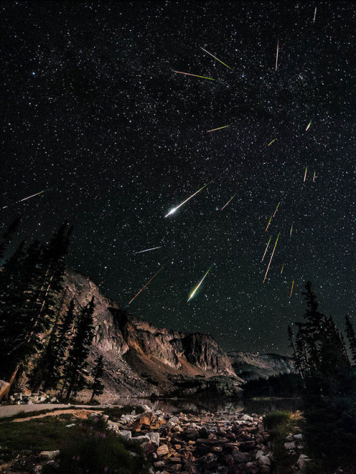 jtotheizzoe:  Perseids Meteor Shower Composite This long exposure shot by David Kingham as a friendly reminder that we are orbiting the Sun at 67,000 miles per hour, rocketing around the center of the Milky Way at 490,000 miles per hour, and traveling towards the constellation Leo at a blistering 390 kilometers per second. That means that we happen to pass through the thin, dusty tails of comets long passed, like Swift-Tuttle, the Perseids' source, we shouldn't be surprised to see a few fireworks. We're really moving, folks. (via kottke)