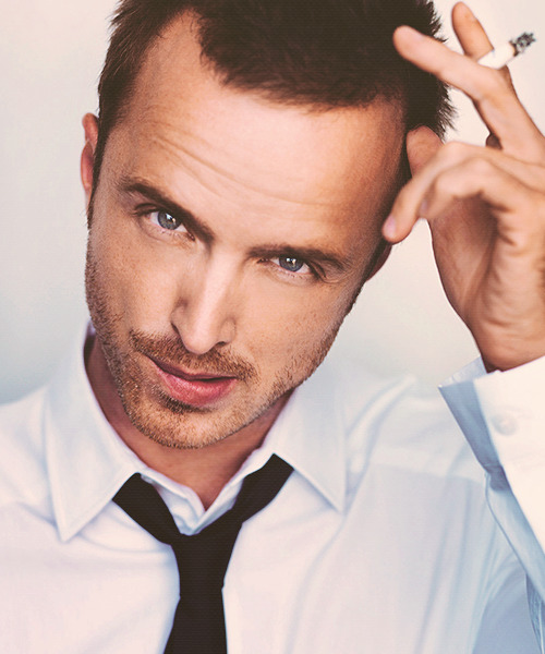 """[…] Aaron Paul very quickly made himself irreplaceable, and he did that without even trying to. He did that just by being the excellent actor that he is and bringing so much energy and emotion and pathos to this character, so much lovability, that he made himself irreplaceable."" ─ Vince Gilligan"