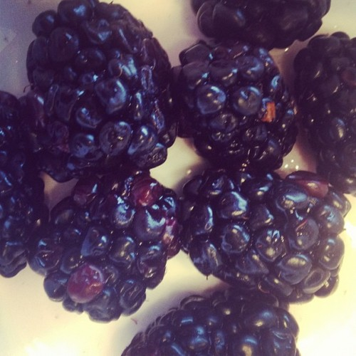 Day 10: Fruity #snack! Had some #organic #blackberries this morning! #summerfitnesschallenge #30daychallenge #healthy  (Taken with Instagram)