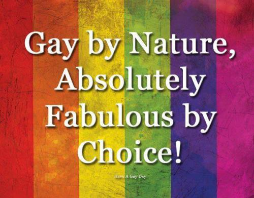 lgbtqgmh:  [Gay by Nature, Absolutely Fabulous by Choice!]
