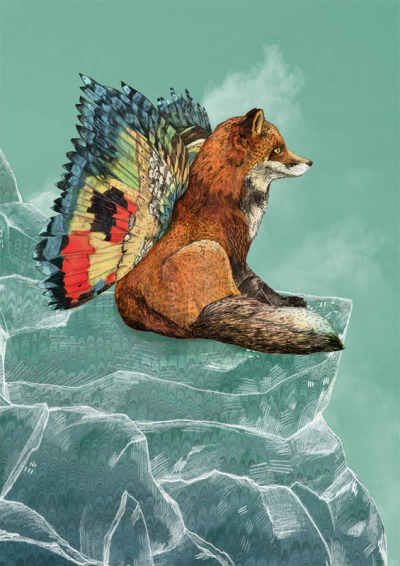 urhajos:  'Flying Fox' by Sandra Dieckmann