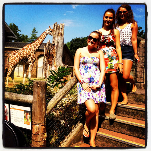 Day at London Zoo with the beautiful Taylor sisters!