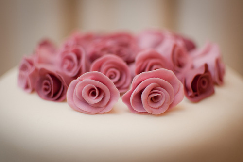 clottedcreamscone:  Sweet roses by Mr:Mac on Flickr.