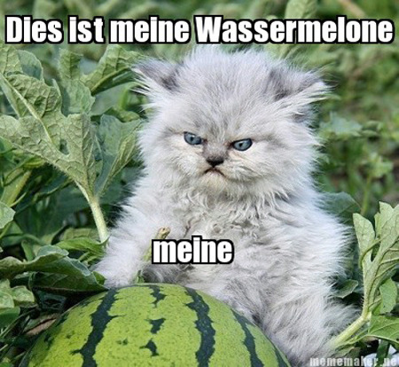 Hehehe a German kitty :)