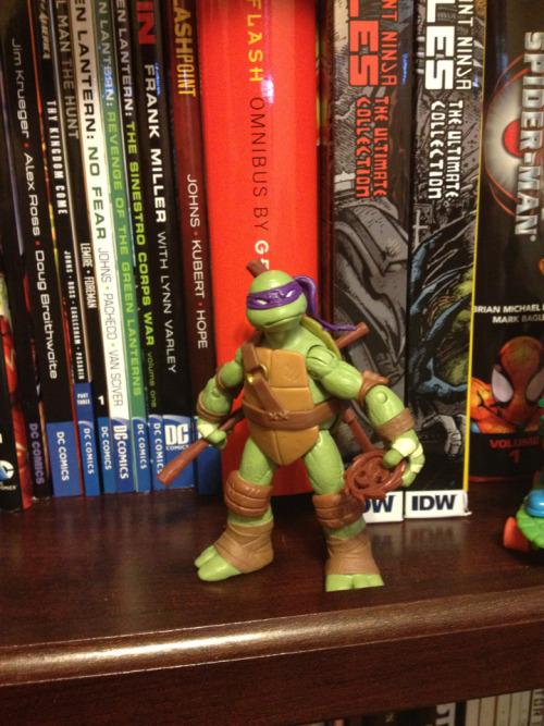 Woooo Donatello came in the mail!
