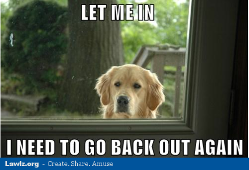 Let Me In, I Need To Go Back Out AgainMore funny pictures at Lawlz.org