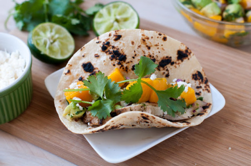 phoods:  (via Marin Mama Cooks: cilantro lime chicken tacos with mango avocado salasa)