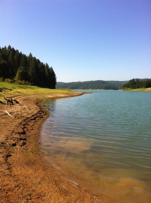 connie-awanderingsoul:  Pretty day at Hagg Lake. Found a new trail and a secret beach. If you love great writing and appreciate photography, follow my friend Connie and her adventures exploring Oregon, Life and art.
