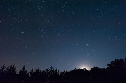 Perseid-Comp_screen by neutronman61 on Flickr.