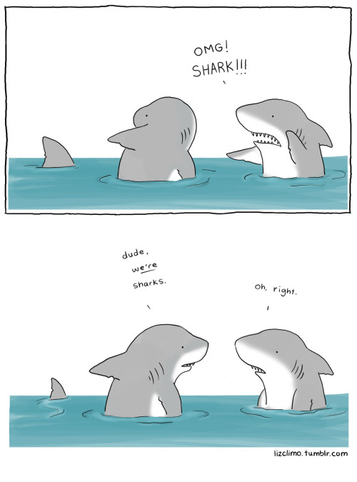 tastefullyoffensive:  lizclimo: happy shark week