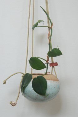 breeze in ocean: handmade ceramic hanging vase    by Shino Takeda