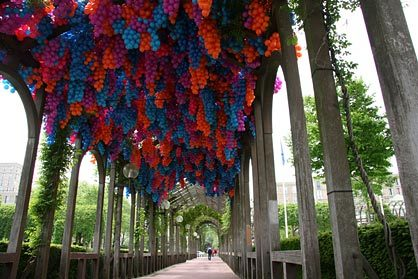 I love this art installation Grand Pergola - the Hotel-de-ville!
