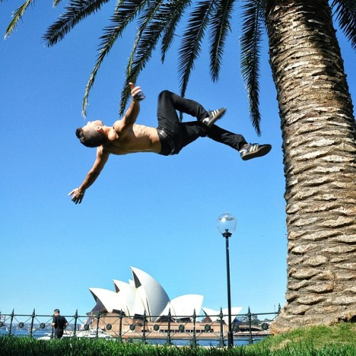Palm-tree backflip over the Sydney Opera House. Sydney, Australia.  (Taken with Instagram at Sydney Opera House)