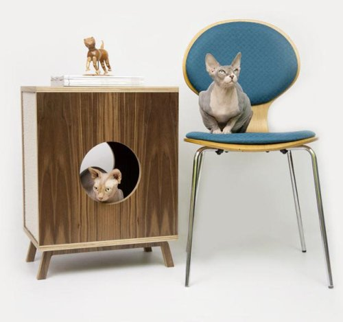 justanasshole:  Circa50 Cabinet by Moderist Cat(via Fancy)