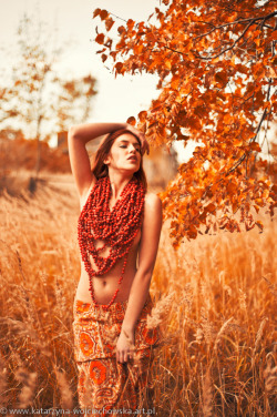 Lady of autumn IV by *cherrilady