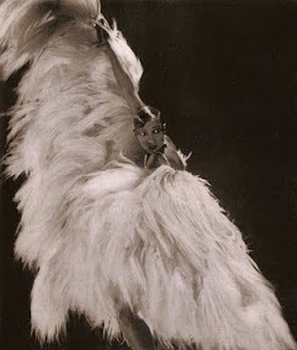 injustices-of-poetry:   Madame Josephine Baker   toute de beaute!