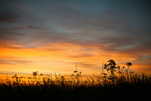 daybreak by Suzi Marshall on Flickr.