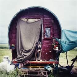 coyotespiritchild:   The New Gypsies by Iain McKell via Calamity Pass Trading Company
