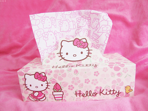 l0vepink-x:  Ahh hello kitty tissues?! ♥♥♥