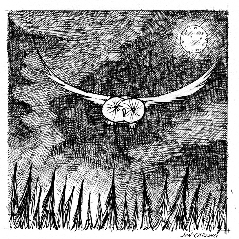 "joncarling:  ""night owl' Sketchbook Exhibit #50"