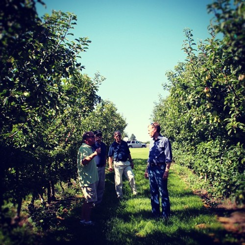 #RobMcKenna touring an orchard in Othello #wagov (Taken with Instagram)