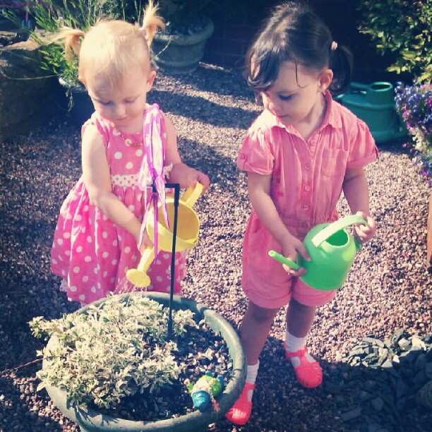Watering the plants!! (Taken with Instagram)