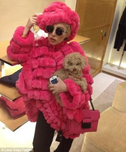 elizabethswardrobe:  Lady Gaga in a real fur Giorgio Armani coat. I'm not going to go into the fur debate too much, but if Lady Gaga thinks that campaigners should use flour to make bread for children who are hungry, perhaps she should stop wearing dresses made out of enough meat to feed a small village?