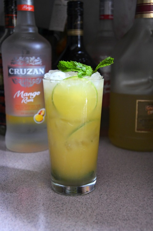 ickymikki:  Mango Orange Mojito by yours truly. =]