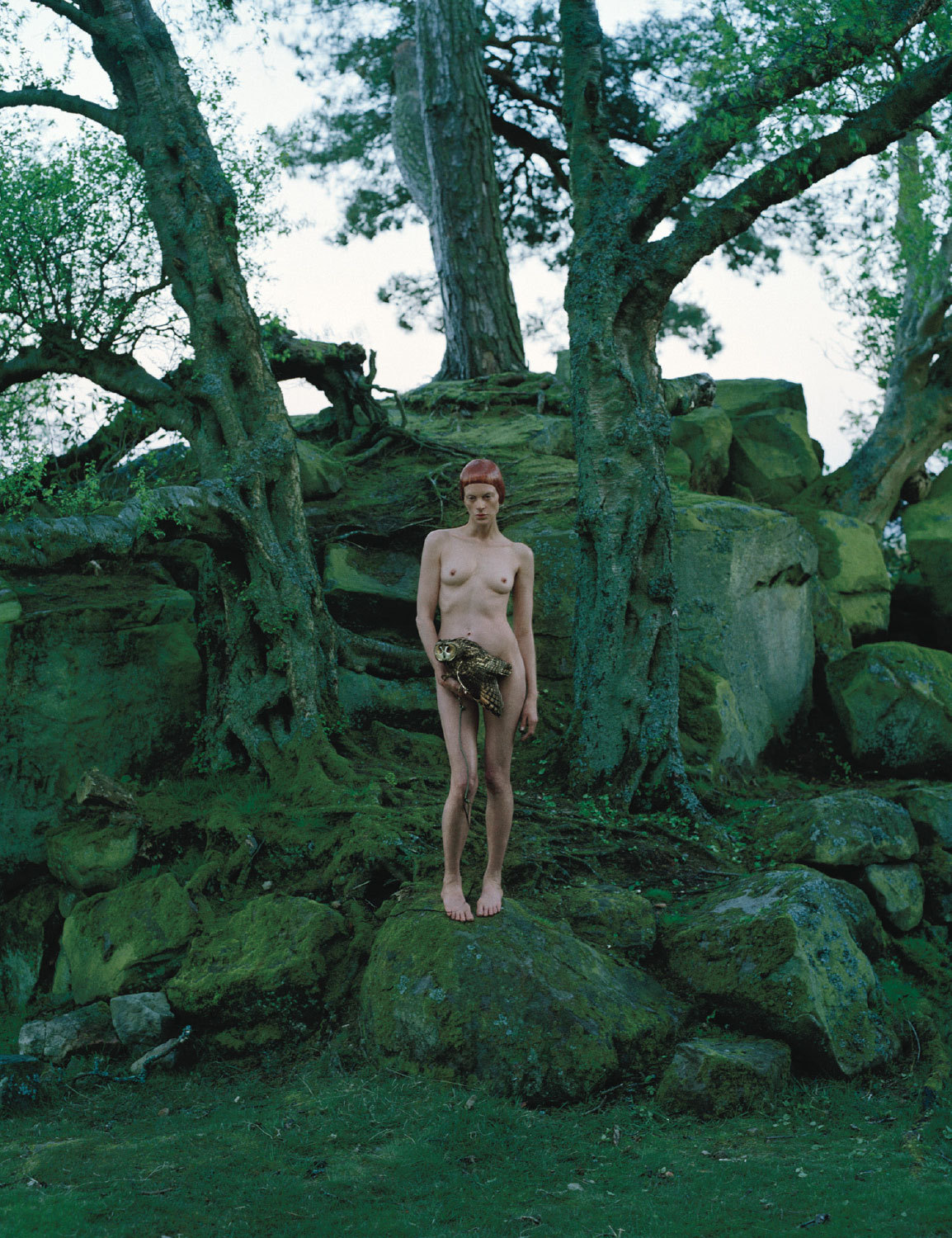 ► W Magazine  | September 2012 Dame Of Thrones Photography Tim Walker | Fashion Editor/Stylist Jacob K |  Model  Kristen McMenamy