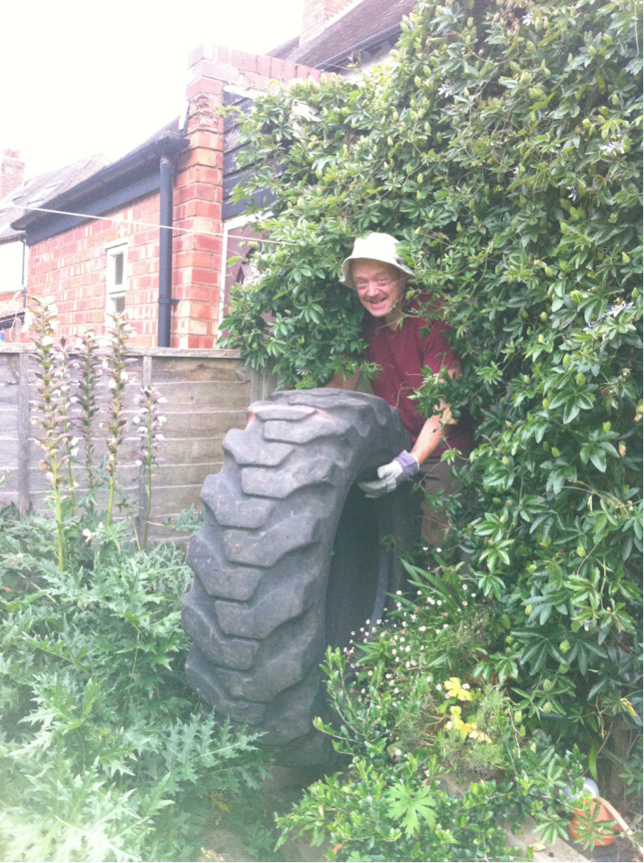 Earth oven preparations continued - Mr Greedy Gardener with one of the two tractor tyres that will form the base of the oven. It was a bit of a squeeze getting it down the side of the house through the passionflower, but he made it in the end.
