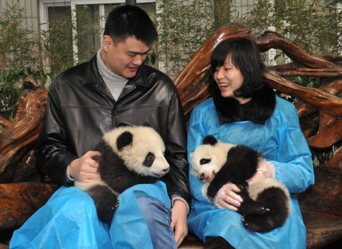 Yao Ming and his Wife
