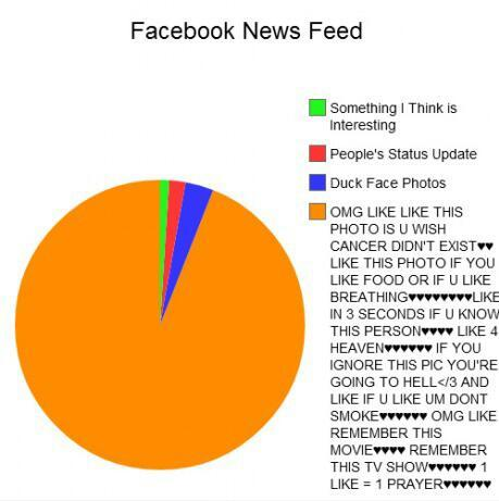 An accurate pie chart of facebook