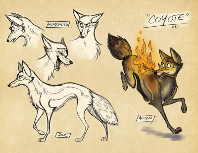 """Character Design - Coyote"" 2011"