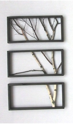 Tree branch wall art for a Wildling home.
