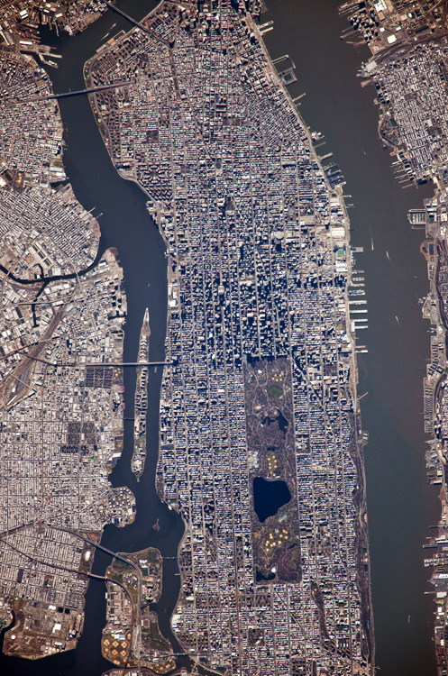 etrewild:  New York City