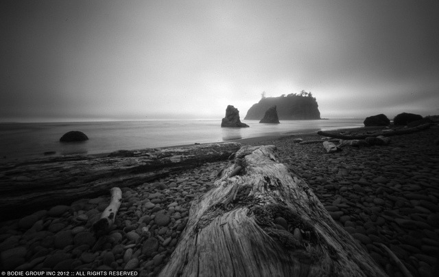 bodiegroup:  Ruby Beach pinhole on Flickr.I shot this pinhole while setting up my 4x5