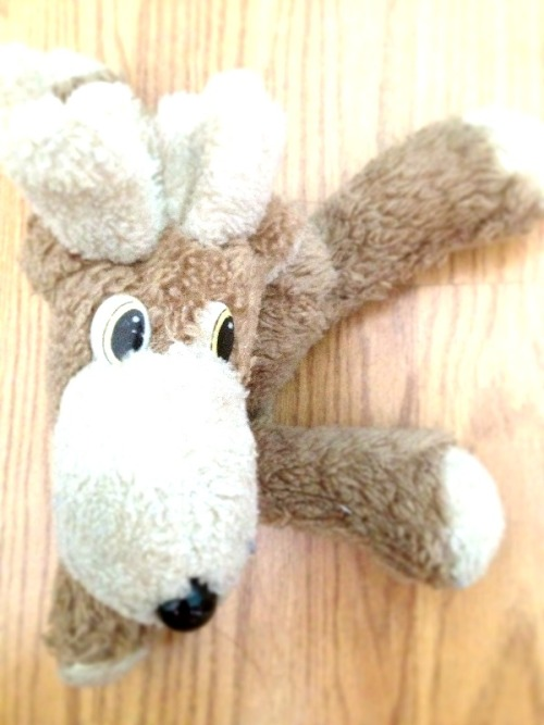 School Moose was always my favorite stuffed animal growing up. I only recently realized it's because he was the only one who couldn't make eye contact.