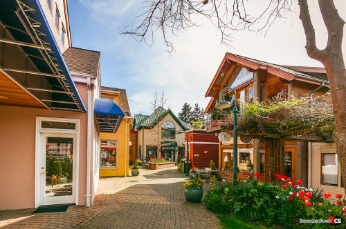the idyllic village at the heart of Langley, WA. continued!