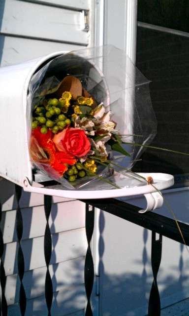 dearaimee:  I came home from work this afternoon to find a bundle of flowers in our mailbox with no note or any indication where they came from. Turns out they were a nice surprise from Hayes!