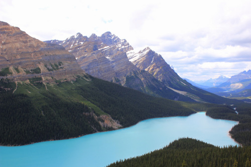 Peyto Lake, Canada (by esther jung)