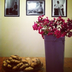 Chocolate chip cookies with @smrnta, background photography by Evan Hickman@ http://kickingadeadhorse.tumblr.com/ recipe here: http://vegweb.com/recipes/happy-vegan-chocolate-chip-cookies (Taken with Instagram)