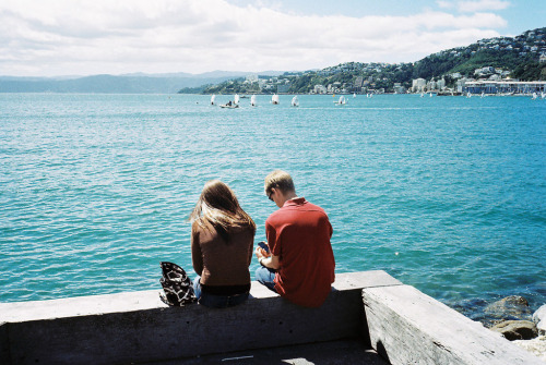 sarcastical:  Why we love Wellington (by modern kōgaku)