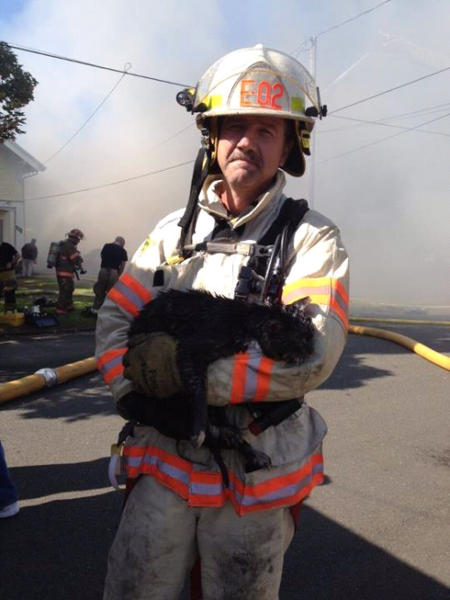 There was a house fire in my town today. This man saved the owner's cat from the burning building.