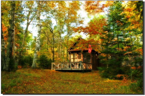 Little Cabin in the woods… (by nature55)