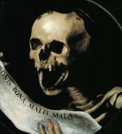 diablorum666:  Memento Mori !  its extra wide grin is terrifying.