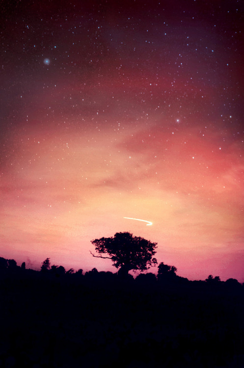 galaxyshmalaxy:  Looking for Perseus, Meteor Shower 2012 (by Jerrycharlotte)