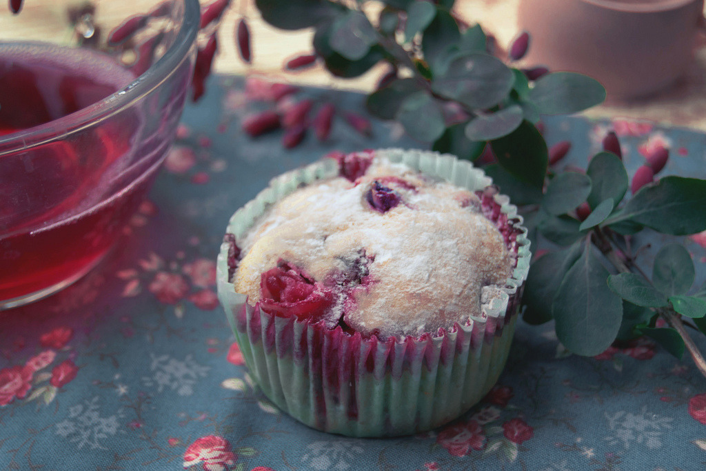 cranberry muffin (by Silivren)