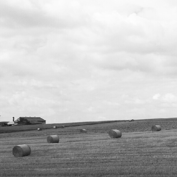#BALES #POLAND  (Taken with Instagram)